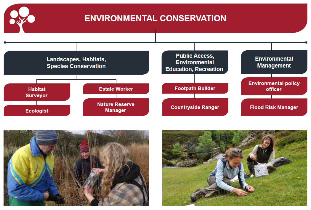 Jobs in environmental conservation