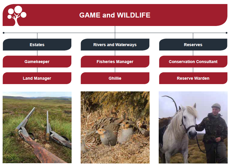 jobs in game and wildlife management